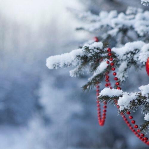 Різдво в Карпатах 2021